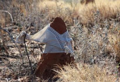The latest in termite hill fashion.