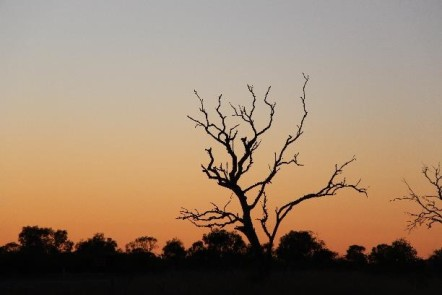 Aww, pretty sunrise, my first in the Northern Territory. It was worth the sleep deprivation
