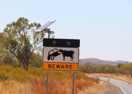 Car eating cows ahead. What else could it possibly mean.