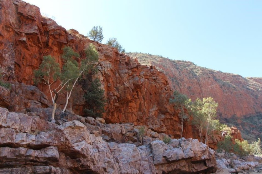 Red cliffs and white trees. I'm sensing a pattern here.